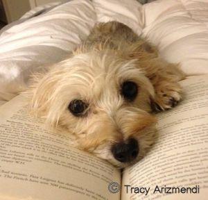 Lola Reading TA
