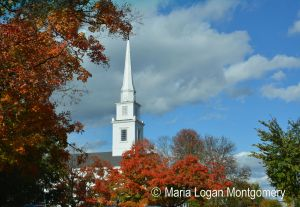 Steeple in Fall Leaves - MLM 1